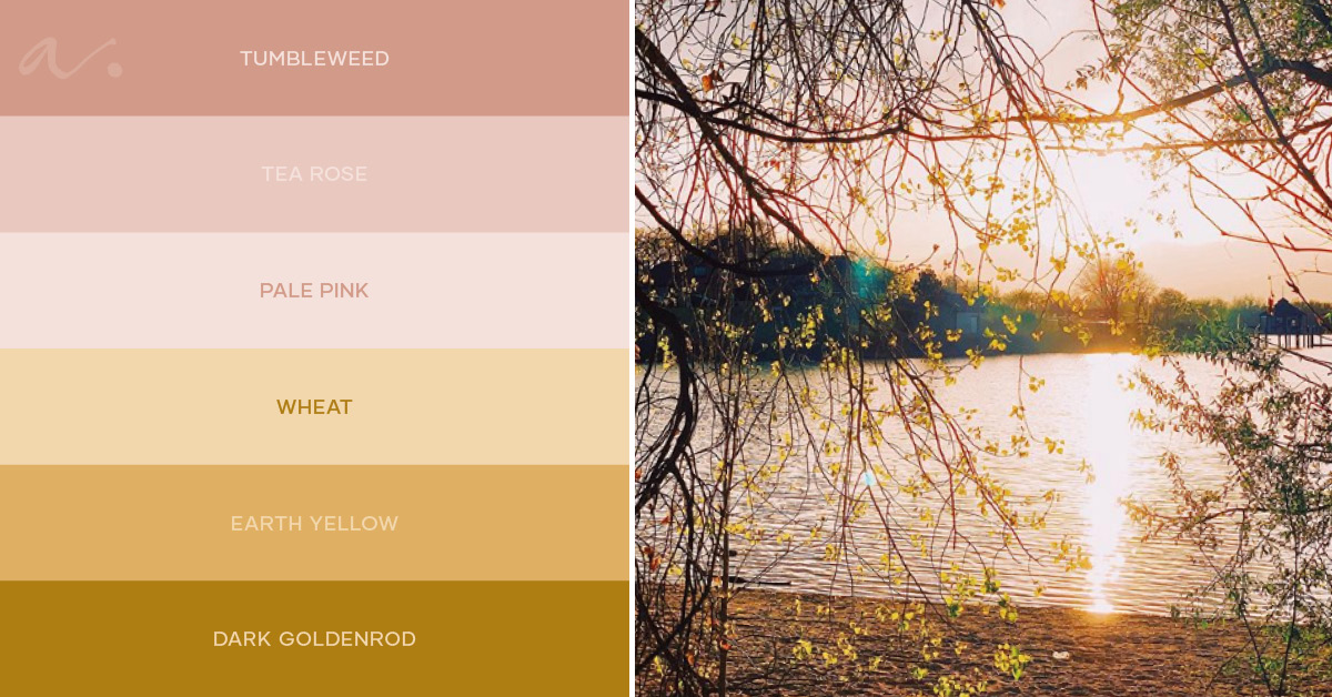 Color palette #livingtheinspiration Ambientha 08.19