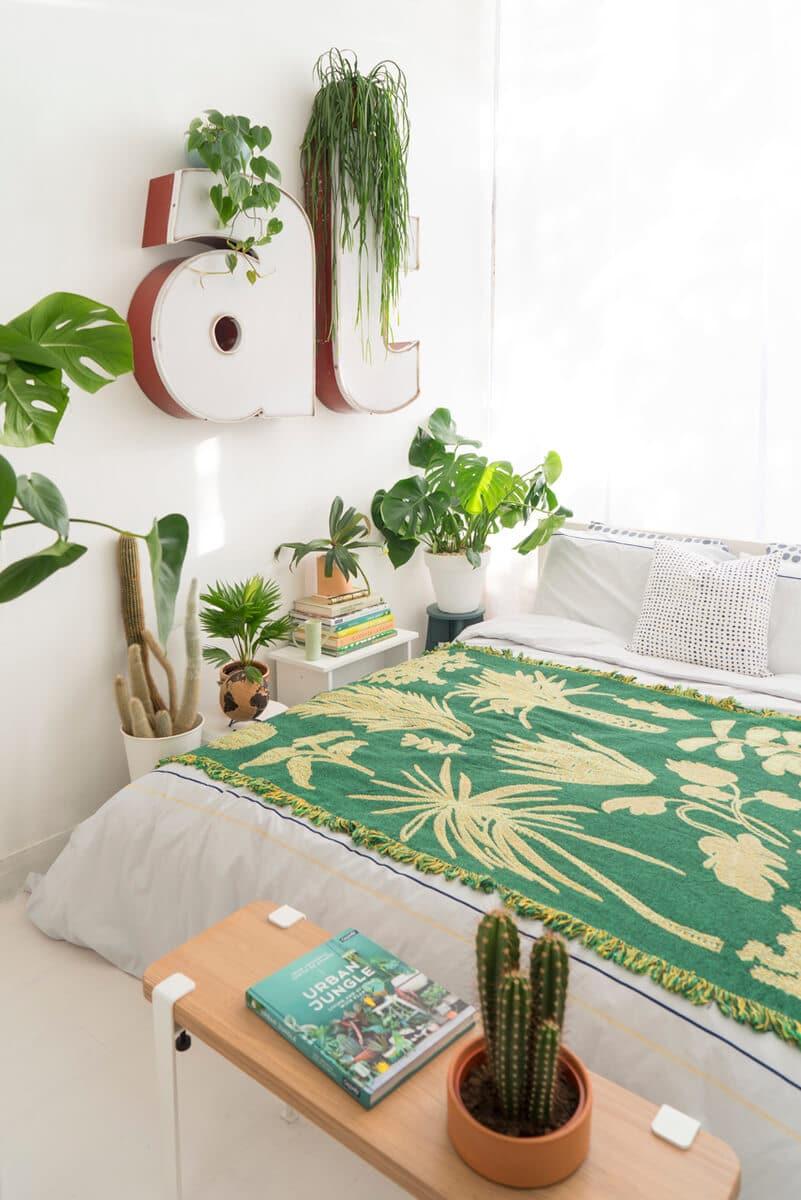 Piante in camera da letto - Ambientha