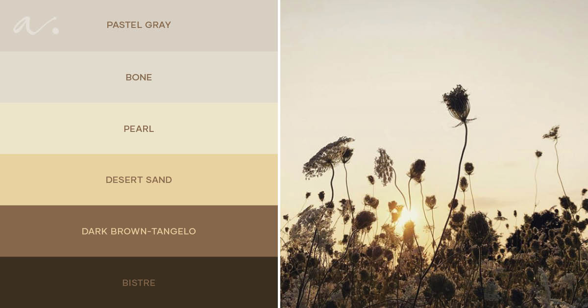 #livingtheinspiration-color-palette-inspiration-ambientha