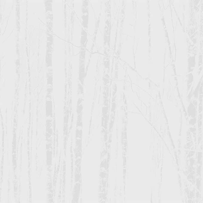 carta da parati nordicity silver - Design by ambientha