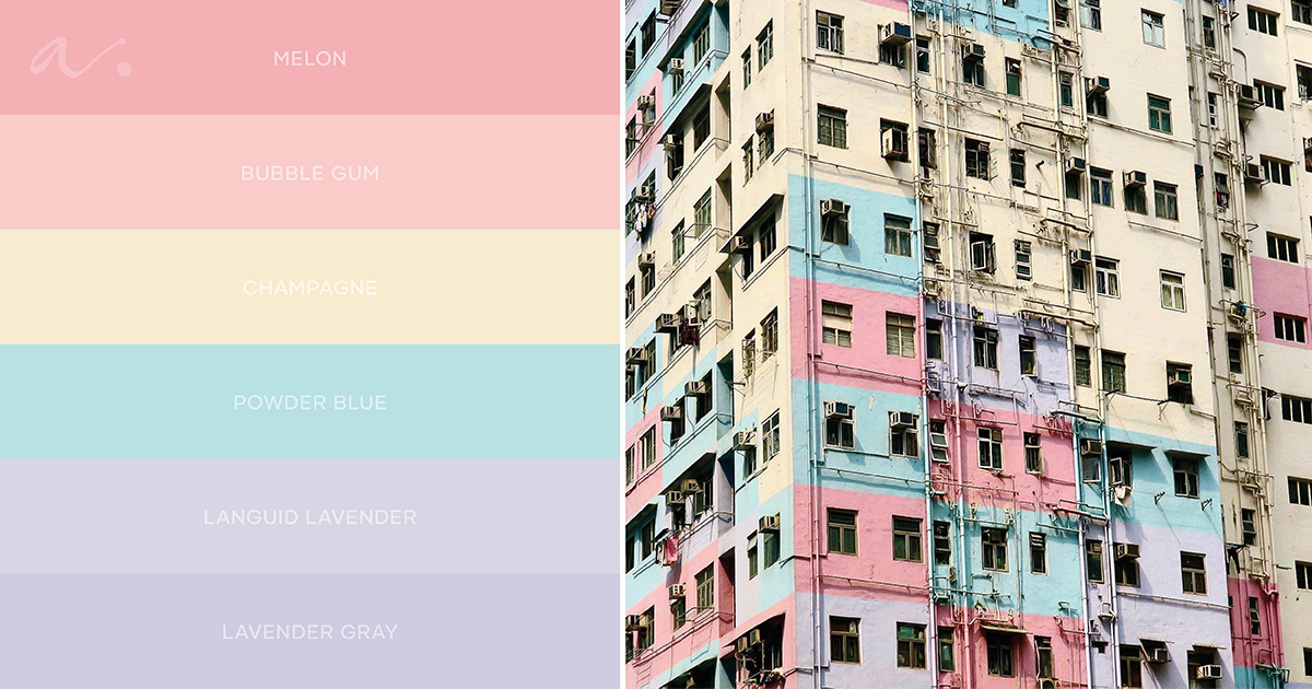 color palette hong kong inspiration