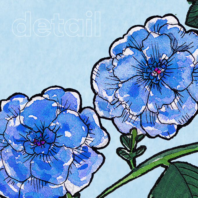 country bouquet ambientha wallpaper