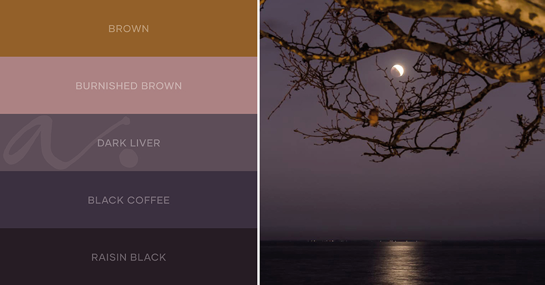 color palette encantos do sul inspiration