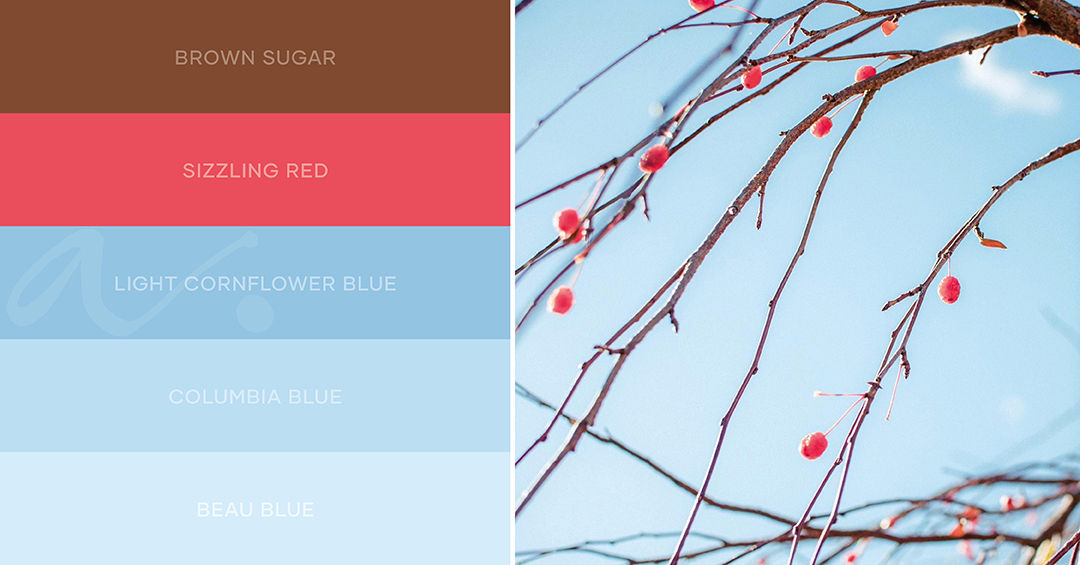 color palette natural combinations