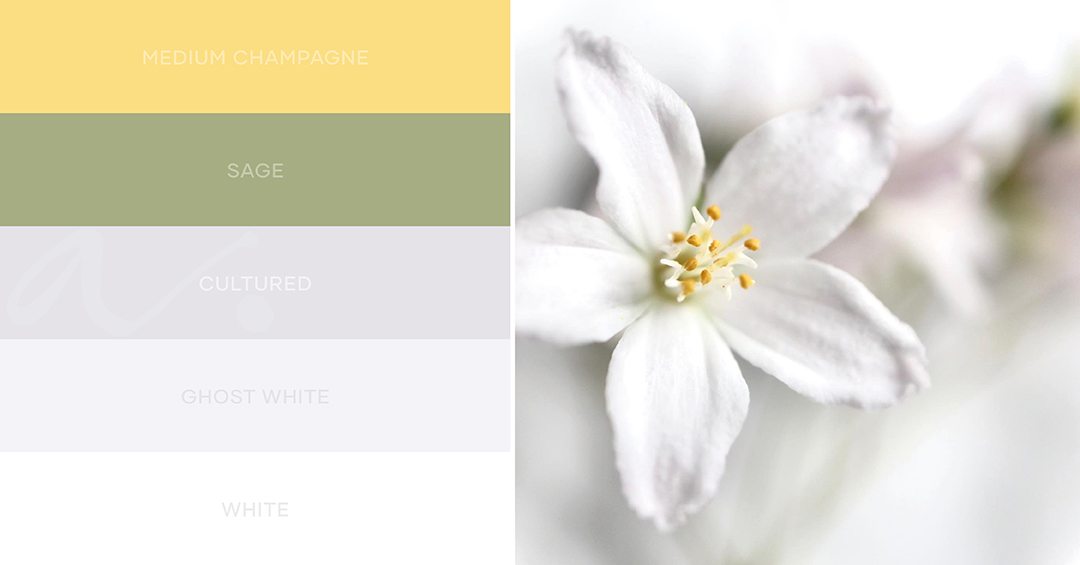 white gold color palette inspiration