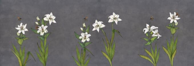 carta da parati fiori grandi lily concrete