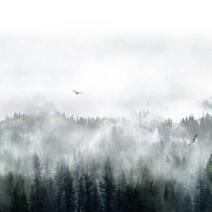 carta da parati montagne eagles storm