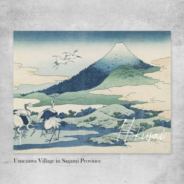 stampe giapponesi hokusai
